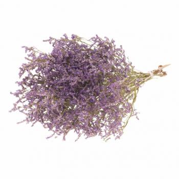 Limonium Tatarica paars/lila gedroogd