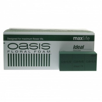 Oasis® Ideal 20