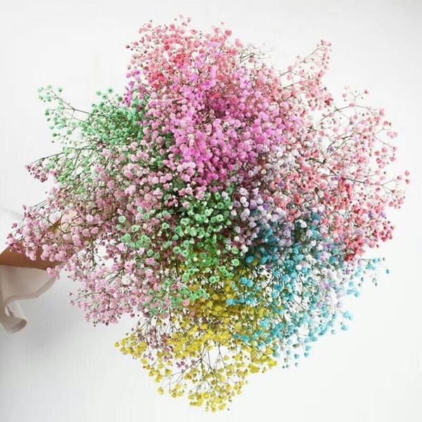 Gypsophila geverfd in diverse kleuren